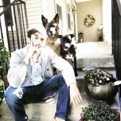 Joey, Pet Walker in Frederick