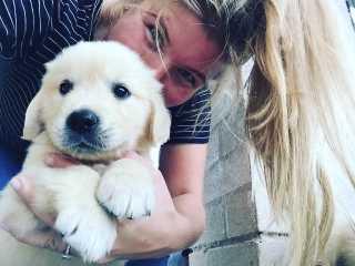 Shanlee, Pet Boarder in Engadine