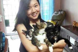 Samantha, Pet Boarder in Rawang