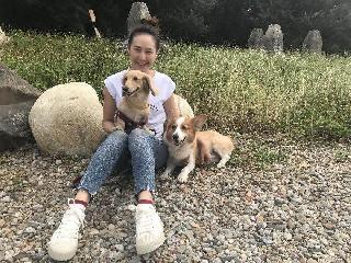 Lily, Pet Boarder in 桃園市