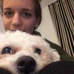 Class A Pet Care