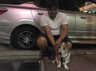 Nicolas, Pet Boarder in Bedok