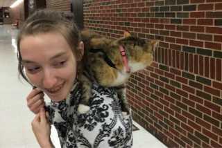 Faith, Pet Sitter in Wichita
