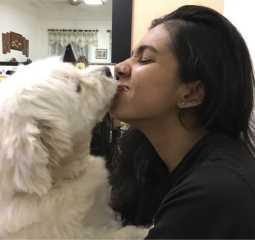 Vithya Loves Dogs