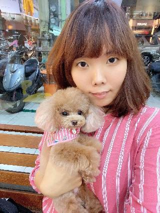 沁純, Pet Boarder in 臺南