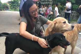 Rowena, Pet Walker in Bukit Batok