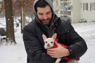 WALKYPAWS Dog Walking   Pet Sitting