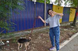Su, Pet Boarder in Klang