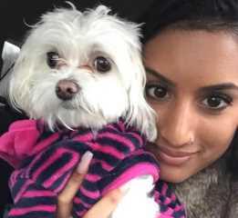 Azmina, Pet Boarder in Dallas