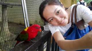 Rachel, Pet Sitter in Petaling Jaya