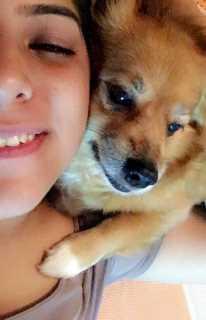 Sanchita, Pet Driver in Toronto