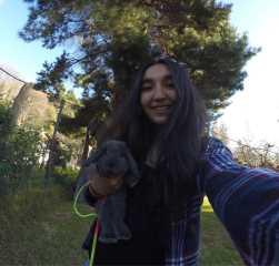Fran Dog Walking