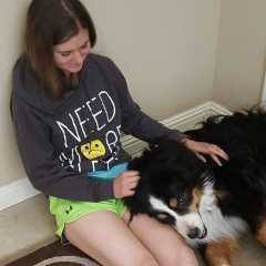 Cassidy, Pet Walker in Hershey