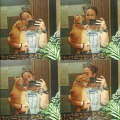 Rinie, Pet Sitter in Pasir Ris