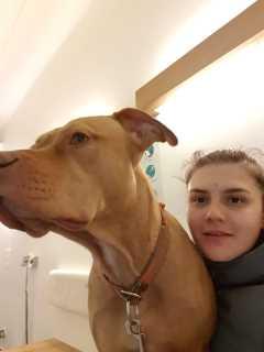 Maria, Pet Boarder in Charlottenburg