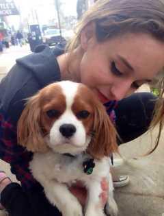 Liza, Pet Sitter in Pittsburgh