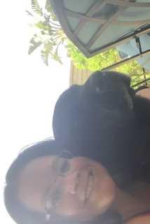 Aunt Sami's Pet Sitting