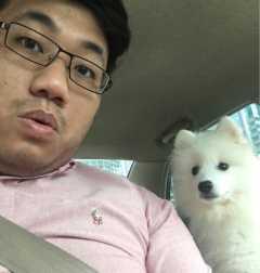 Keenon, Pet Boarder in Queensway