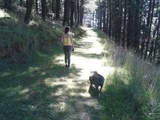 Chanel, Pet Walker in Nairne