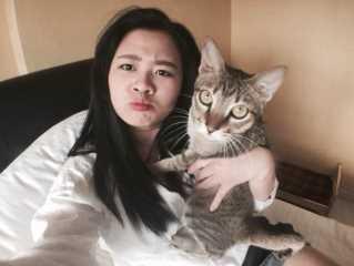 Shirley, Pet Sitter in Sengkang