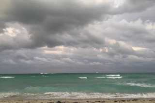 Amani, Pet Walker in Miami