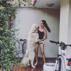 Julia, Pet Sitter in Arana Hills