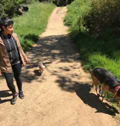 Adalie, Pet Walker in Oakland