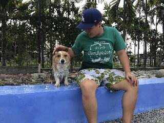 Miniben, Pet Boarder in Pingtung City