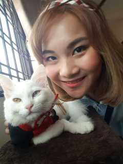 Snowie, Pet Boarder in Johor Bahru