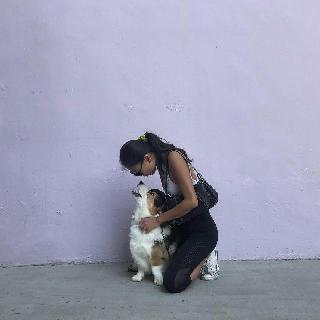 Esther, Pet Walker in Clementi