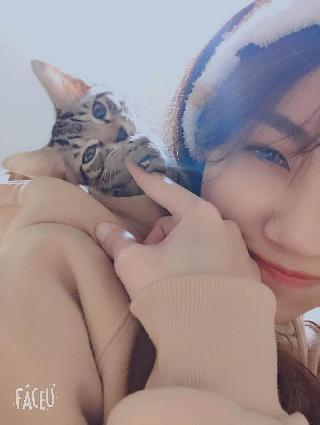 Cady, Pet Sitter in 東區