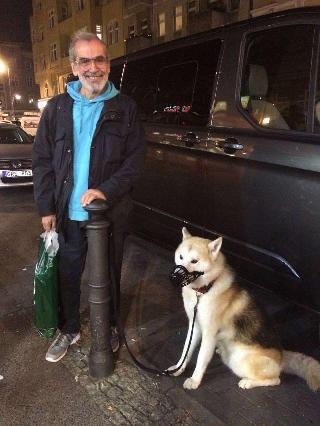 Sam, Pet Driver in Berlin