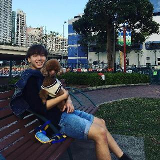 Hon, Pet Boarder in Yuen Long