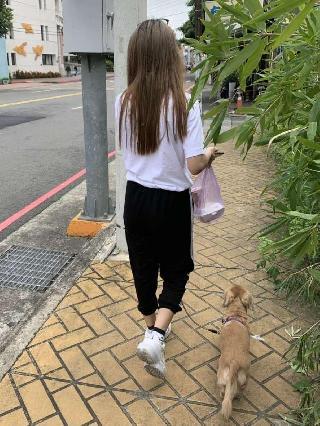 琦琦, Pet Boarder in 淡水區