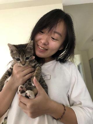Ashley, Pet Boarder in Taman Pertama