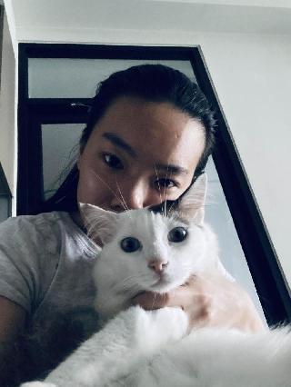 leyau, Pet Driver in Bukit Jalil