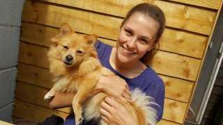Isha, Pet Boarder in Edmonton