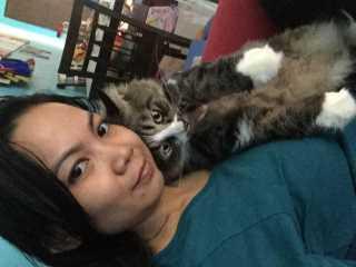 Sophia, Pet Sitter in Shah Alam