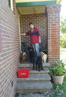 Dominic, Pet Walker in Taree