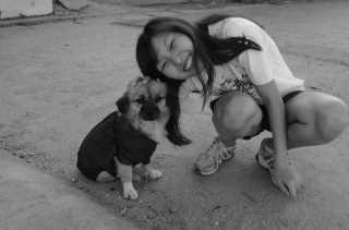 Amanda's Doggie Jalan Jalan