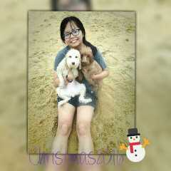 Sylvia, Pet Sitter in Nusajaya