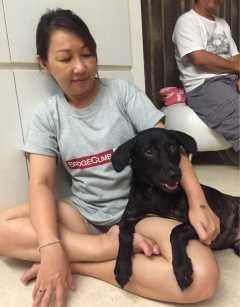 Alice, Pet Boarder in Telok Kurau
