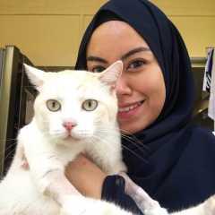 Rinna, Pet Sitter in Pasir Ris
