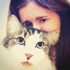 claire, Pet Boarder in Ottawa