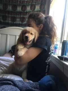 Megan, Pet Sitter in West Sacramento
