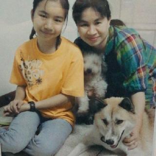 Piraya, Pet Sitter in Bangkok