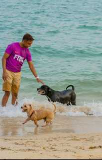 Mahen, Pet Boarder in Bedok