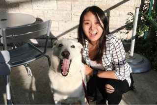 Sylvia, Pet Walker in Kingston