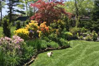 Jan, Pet Boarder in Garden City