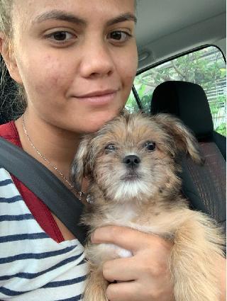 Nadia, Pet Groomer in Pusat Bandar Damansara